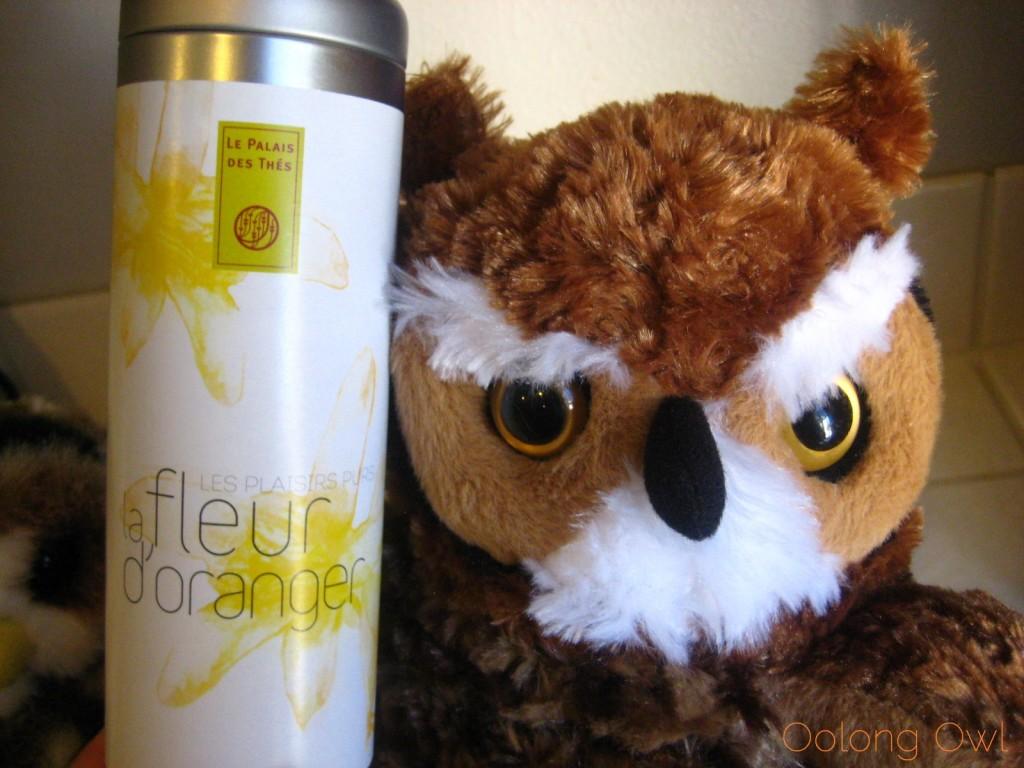 la Fleur d' Oranger from Le Palais Des Thes - Oolong Owl Tea Review (5)