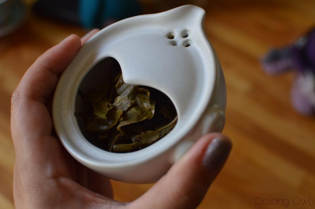 mandala tea heart of the old tree 2012 puer - oolong owl tea review (15)