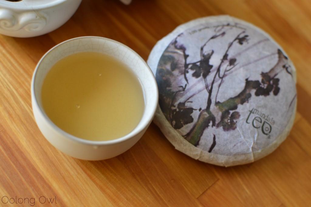 mandala tea heart of the old tree 2012 puer - oolong owl tea review (6)