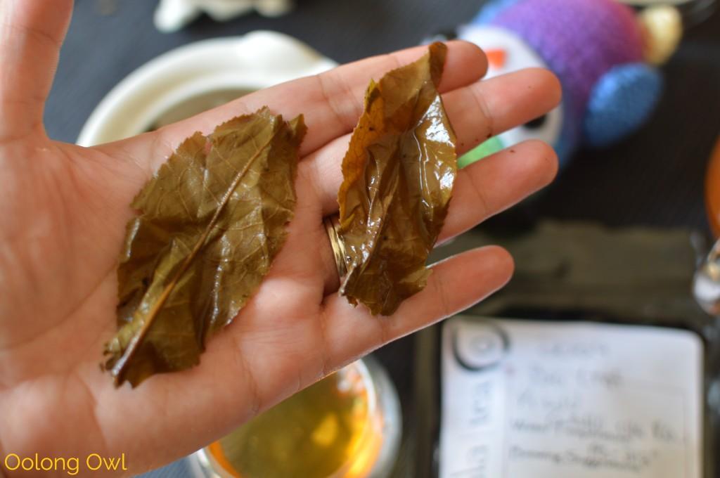 2004 big leaf yiwu gushu raw puer - mandala tea - oolong owl (13)