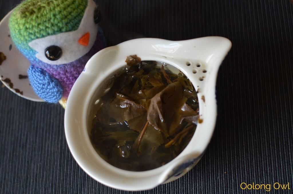 2004 big leaf yiwu gushu raw puer - mandala tea - oolong owl (14)