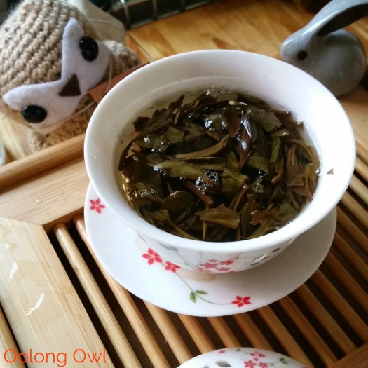 wymm tea jingmai sheng spring 2013 - oolong owl tea review (8)