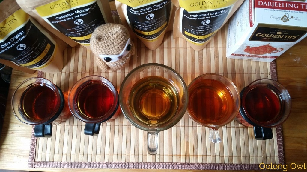 Golden Tips Darjeeling Comparison - Oolong Owl Tea Review (8)