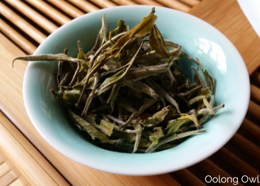 TETE Nepal Teas - Oolong Owl Tea Review (1)