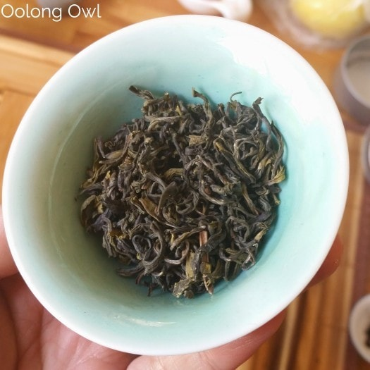 TETE Nepal Teas - Oolong Owl Tea Review (5)