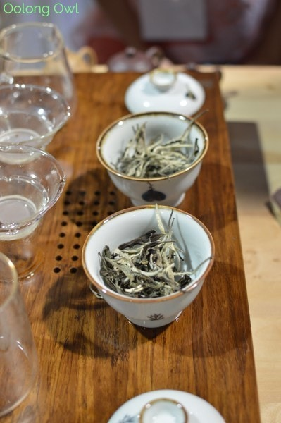 World Tea Expo 2015 - Day 3 - Oolong Owl (13)