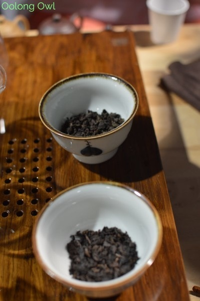 World Tea Expo 2015 - Day 3 - Oolong Owl (24)