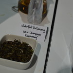 World Tea Expo 2015 - Day 3 - Oolong Owl (48)