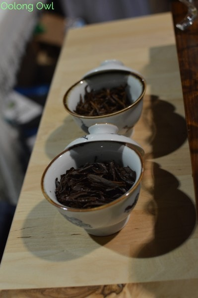 World Tea Expo 2015 - Day 3 - Oolong Owl (5)