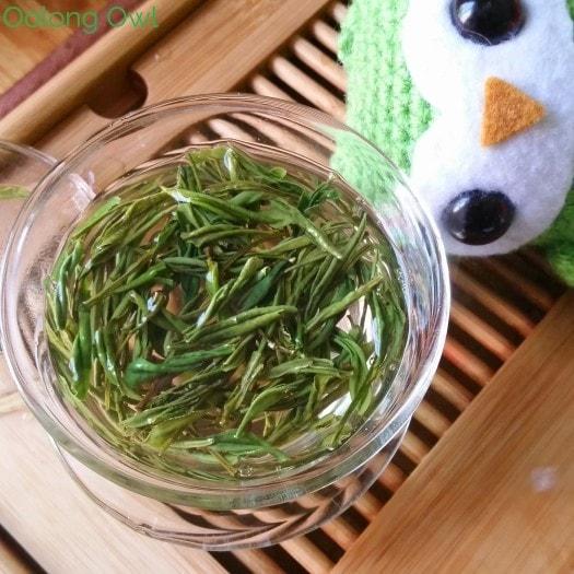 nine lotus green tea from Mandala Tea - Oolong Owl Tea Review (6)