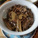 Single Origin Tea - 2011 Sheng puer - Oolong owl Tea Review (6)