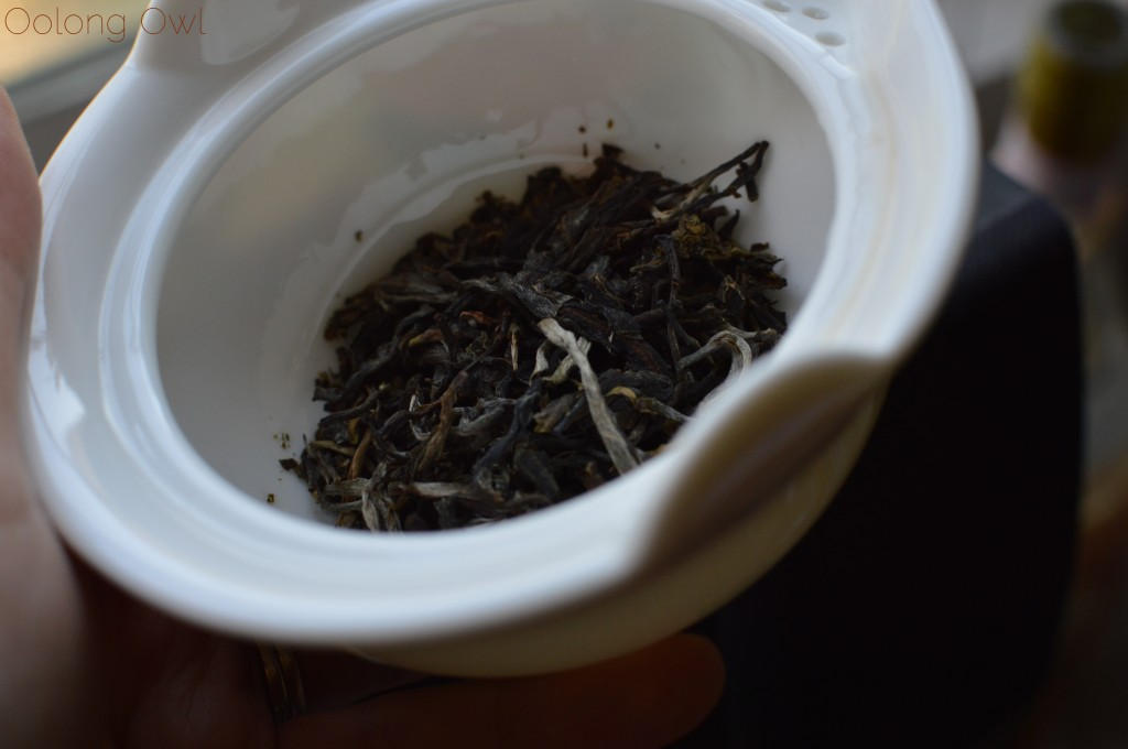 2014 autumn song puer from mandala tea - oolong owl tea review (3)