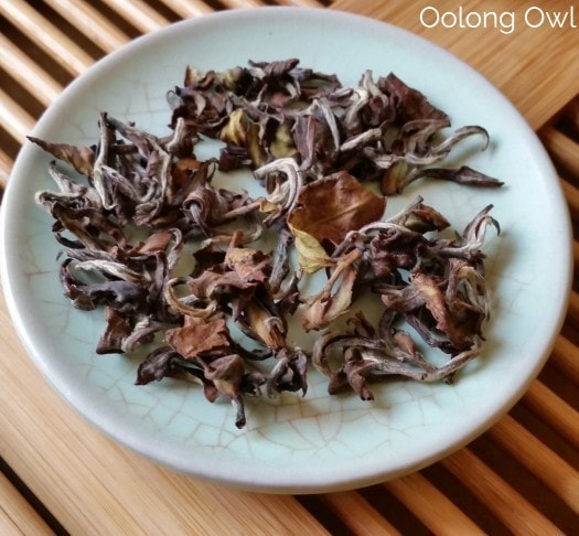 Summus Tea - Oolong owl (6)