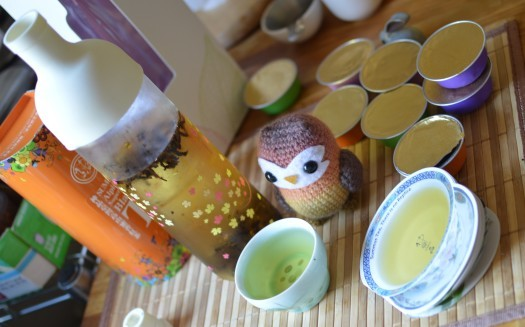 Summus Tea and Cold Brew Bottle - Oolong Owl  (16)
