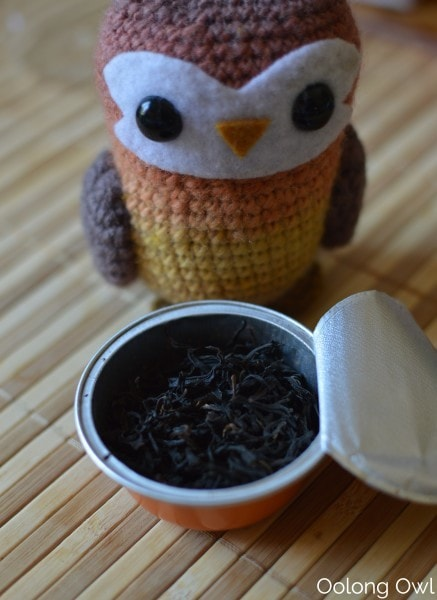 Summus Tea and Cold Brew Bottle - Oolong Owl  (8)
