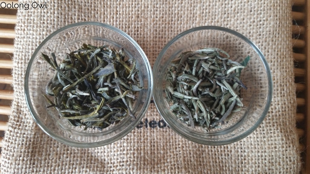 Loose leaf white tea from Nilgiri India