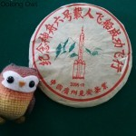 2005 Yiwu Rocket Sheng - White2Tea - Oolong Owl Tea Review (8)