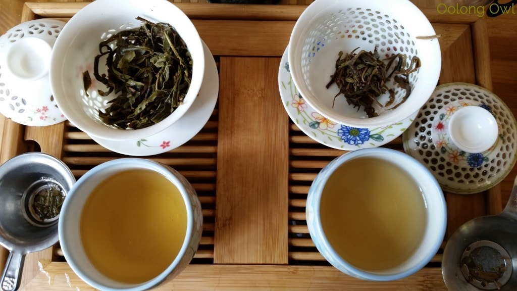 Crimson Lotus 2014 2015 Jingmai Sheng Pu'er Comparison - Oolong Owl Tea Review (10)