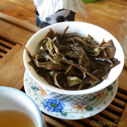 Crimson Lotus 2014 2015 Jingmai Sheng Pu'er Comparison - Oolong Owl Tea Review (16)