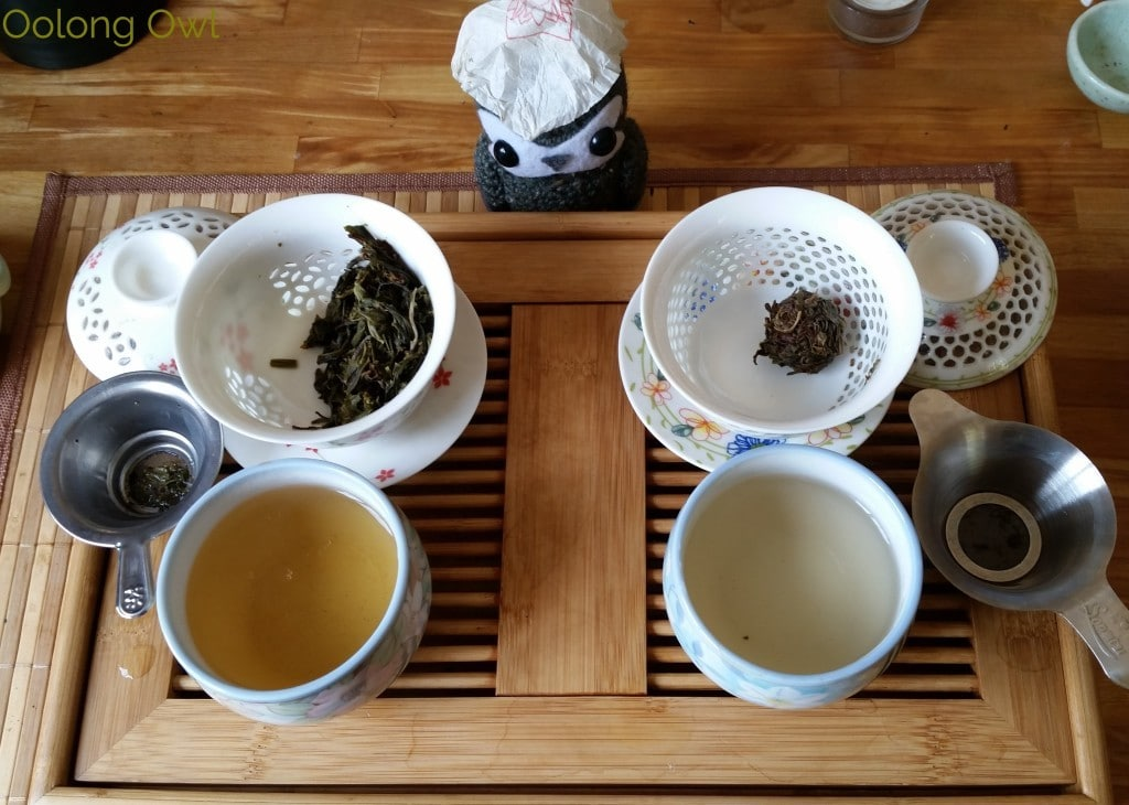 Crimson Lotus 2014 2015 Jingmai Sheng Pu'er Comparison - Oolong Owl Tea Review (6)