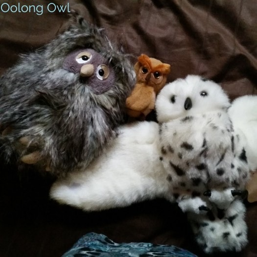Oolong Owls Hooty Tea Travels