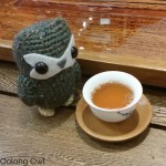 Vancouver August 2015 - Hooty Travels - Oolong Owl (10)