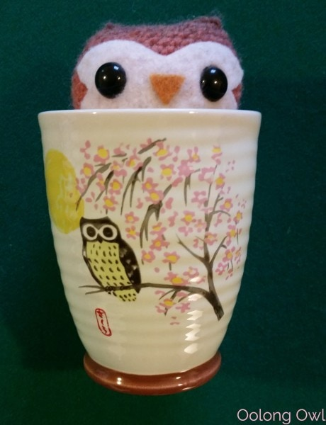 nov2015 daiso haul - oolong owl (1)