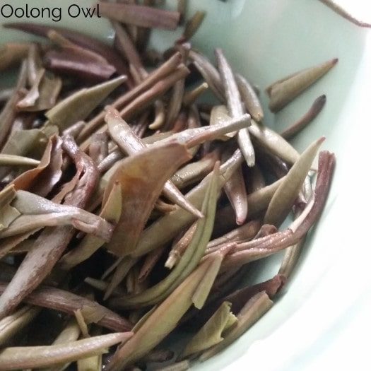The Tea Spot Connoisseur Collection - Oolong Owl Tea Review (14)