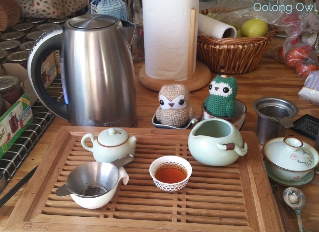 cusinart variable temp kettle - oolong owl teaware review (6)
