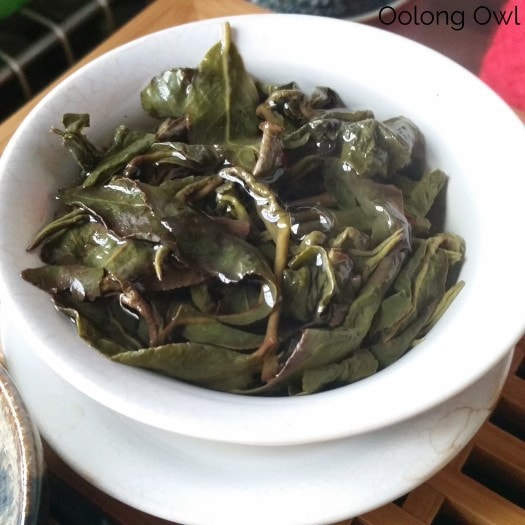 Global Tea Hut Jan 2016 - Oolong Owl (3)