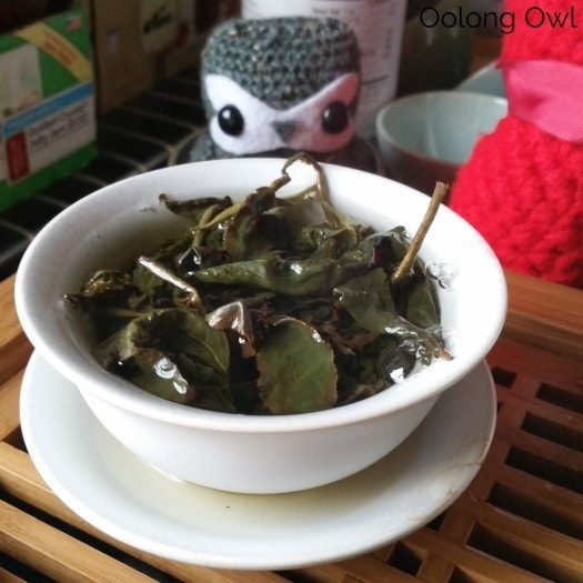 Global Tea Hut Jan 2016 - Oolong Owl (5)