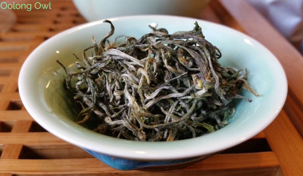 Tea Adventure Green Teas - Oolong Owl (6)