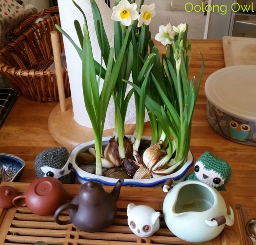 Sunday Tea hoots 13 - tea table flowers (1)