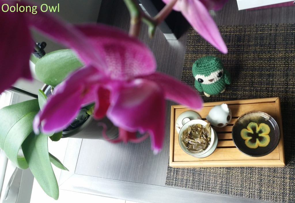 2015 bulang raw mini cake - bana tea - oolong owl (5)