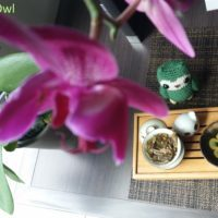2015 bulang raw mini cake - bana tea - oolong owl (5)