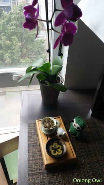 2015 bulang raw mini cake - bana tea - oolong owl (6)