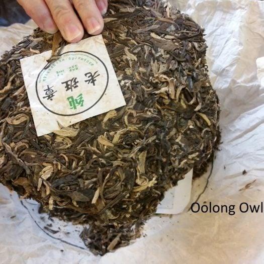 vital tea leaf - oolong owl (10)