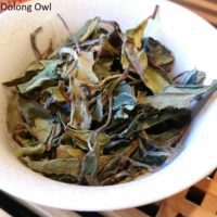 Kumaon White from Young Mountain Tea - Oolong Owl (1)