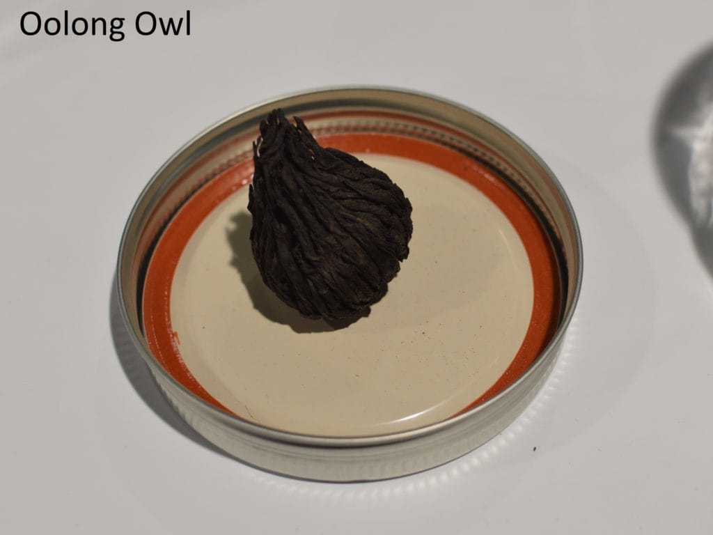 Oolong owl wte 2016 day 1 (37)