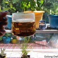 Sunday tea hoots 22 - wte after (1)