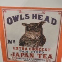 World Tea Expo 2016 Day 2 - oolong owl (20)