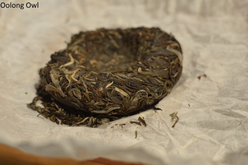World Tea Expo day 3 - Oolong Owl (5)