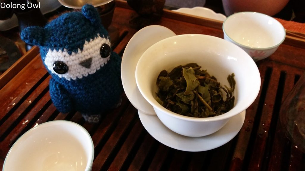 phoenix tea shop - oolong owl (13)