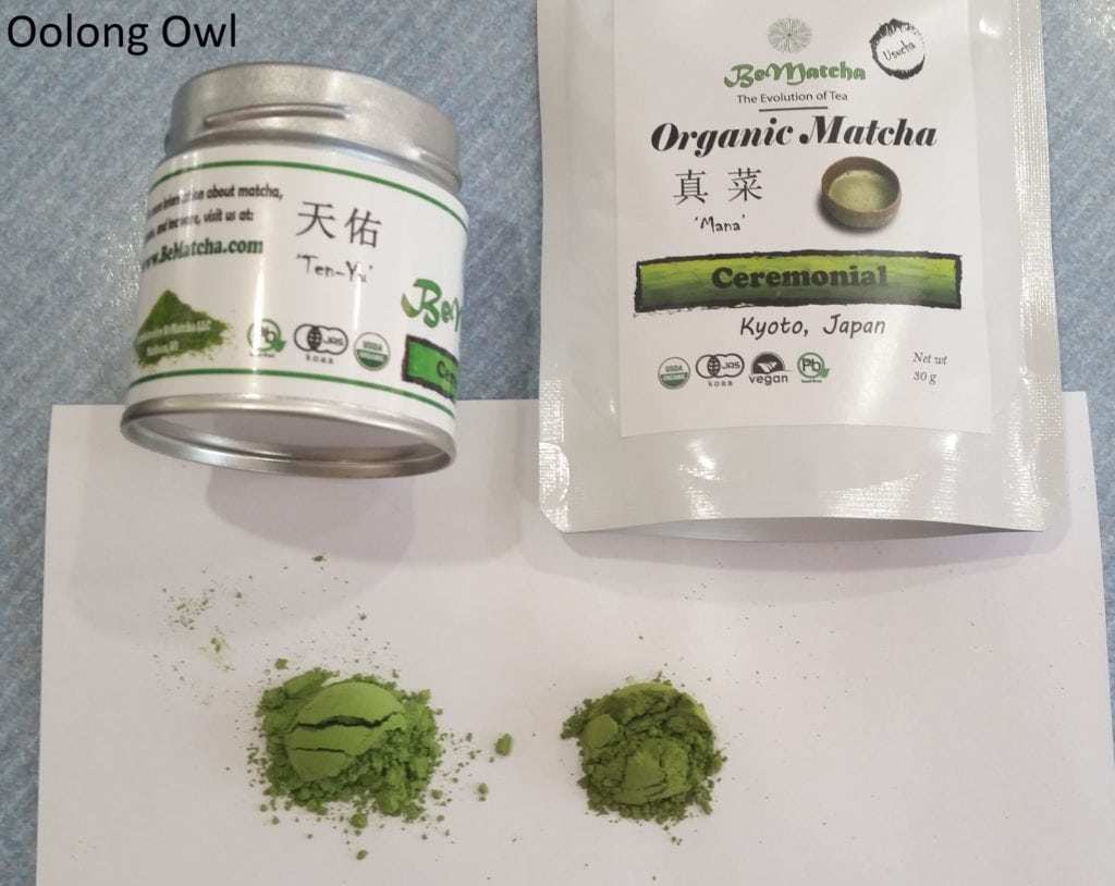 BeMatcha - Oolong Owl (4)