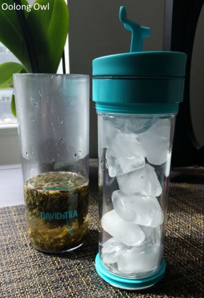 Davidstea iced tea press - Oolong Owl (10)