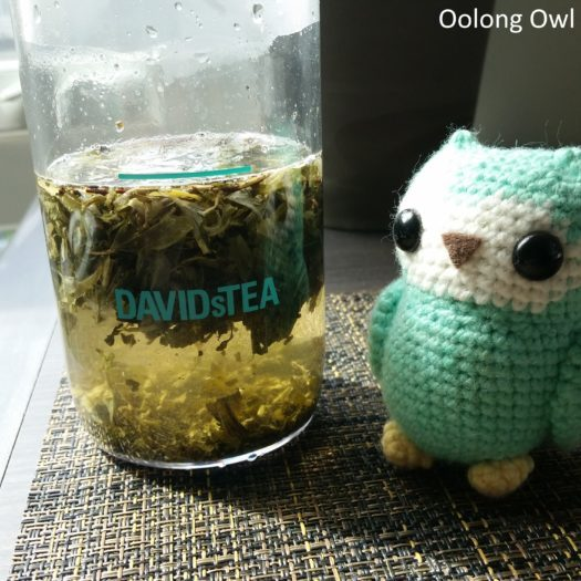 Davidstea iced tea press - Oolong Owl (9)