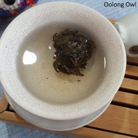 adagio white pearls - oolong owl (6)