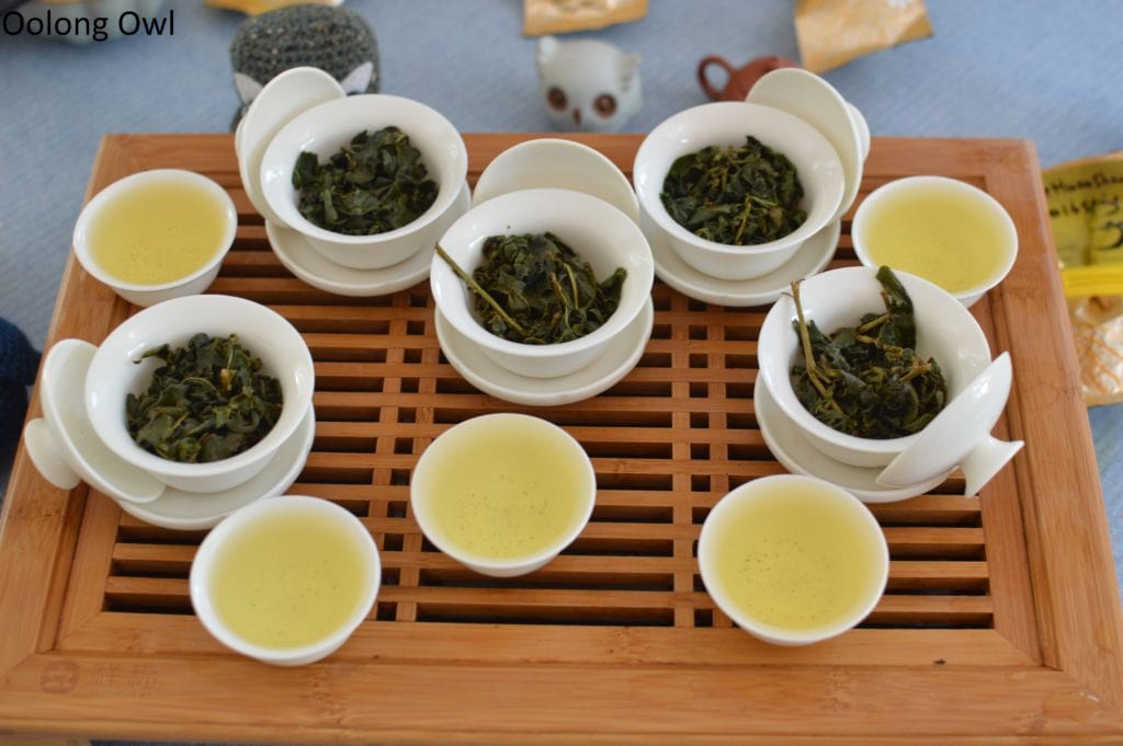 floating leaves blind tasting oolong - oolong owl (11)