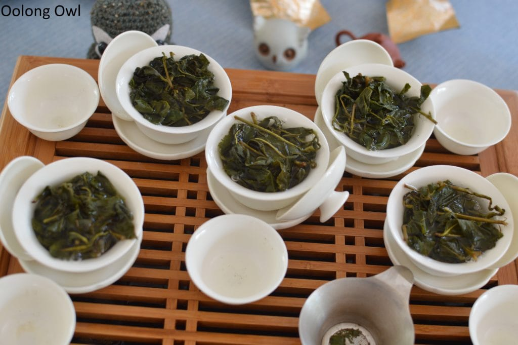 floating leaves blind tasting oolong - oolong owl (12)