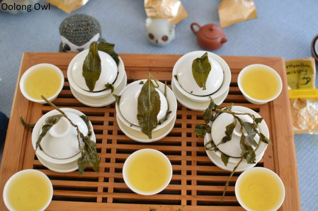 floating leaves blind tasting oolong - oolong owl (16)